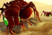 Bug War