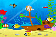 Fish Fun